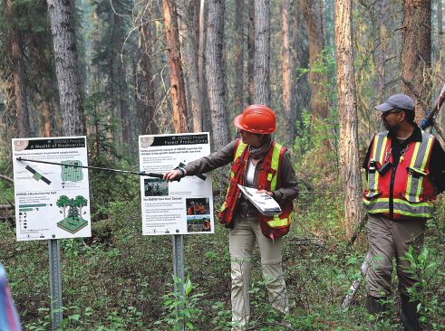 Mercer president promises continued support for EMEND forest experiment during field tour