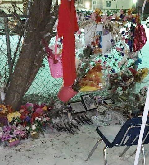 Donovan memorial sparks controversy